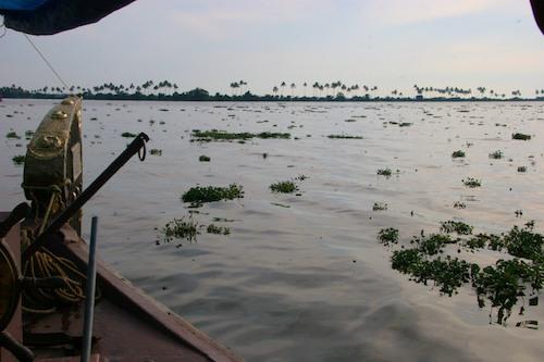 india2009-1058v2blog