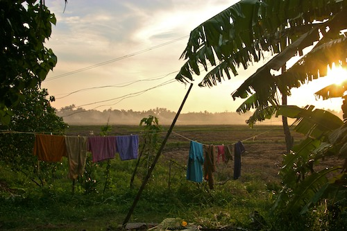 (even laundry LOOKS great here ... you just don't see the bugs, dirt, nor the smell)
