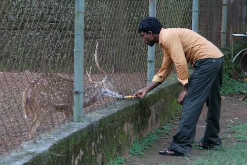 india2009-1574v2blog