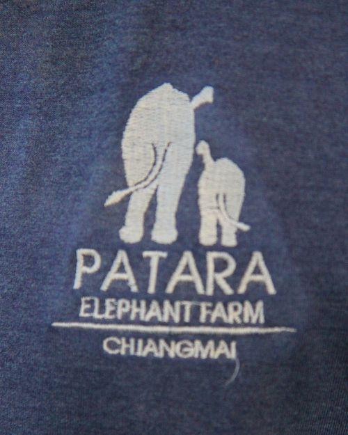 Patara logo