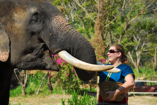 Missy with her elephant at Patara Elephant Camp, Chiang Mai, Thailand