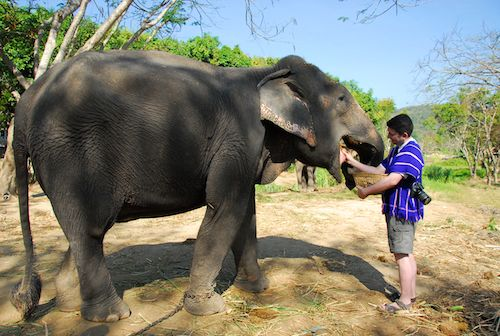 Jason with his elephant Maesi Noi at Patara Elephant Camp, Chiang Mai, Thailand