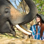 April with her elephant at Patara Elephant Camp, Chiang Mai, Thailand