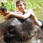 Scott on elephant at Patara Elephant Camp, Chiang Mai, Thailand