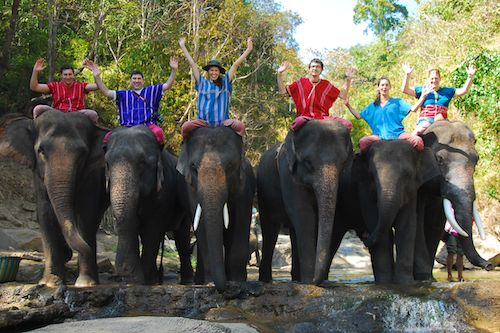 Our group at Patara Elephant Camp, Chiang Mai, Thailand