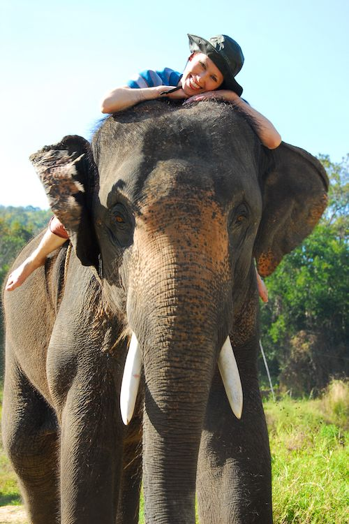 Patara Elephant Camp (Chiang Mai, Day 2)