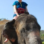 Melissa Priest at Patara Elephant Camp, Chiang Mai, Thailand