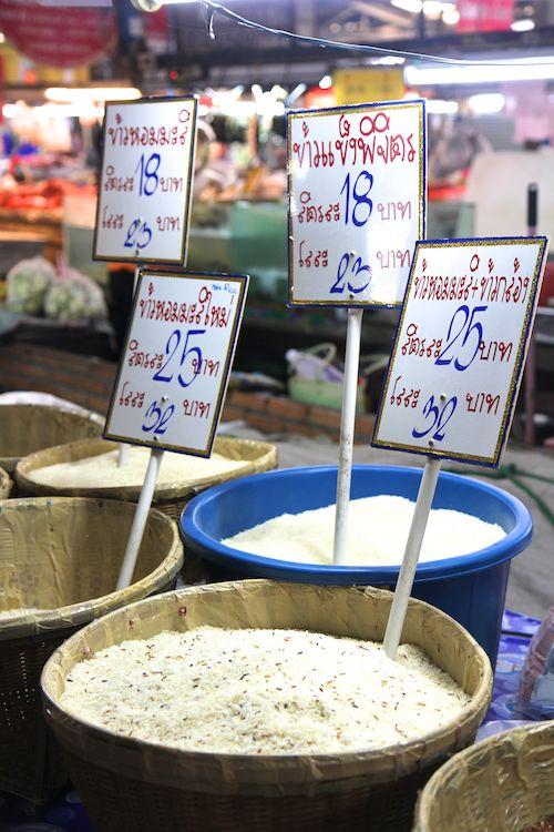 rice near chiang mai