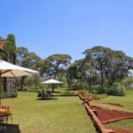 Giraffe Manor in Nairobi during Wedding World Tour