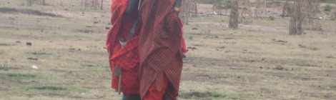 Maasai Chickens!
